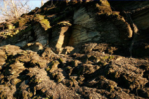 Outcropping in Marcellus, NY.